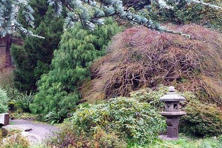 Pet Friendly Kubota Garden