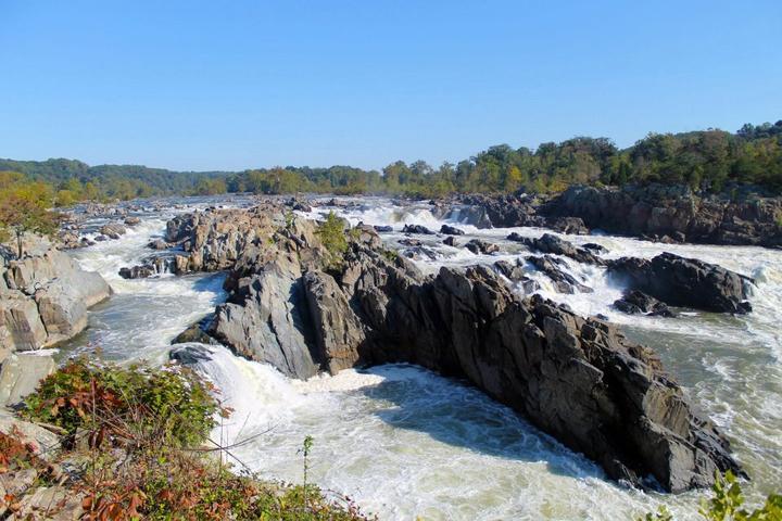 Pet Friendly Great Falls Park