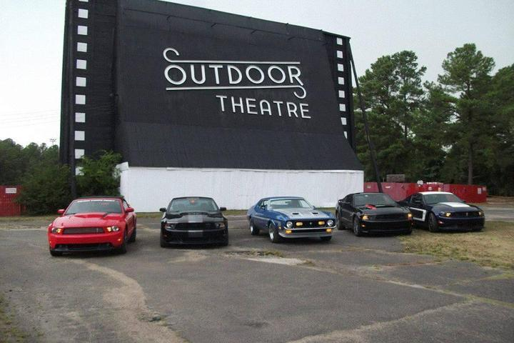 Pet Friendly Raleigh Road Outdoor Theatre