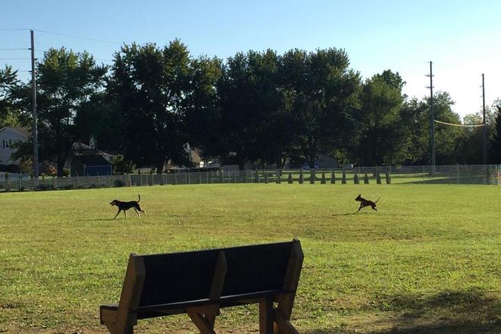 Pet Friendly Wadsworth Community Dog Park