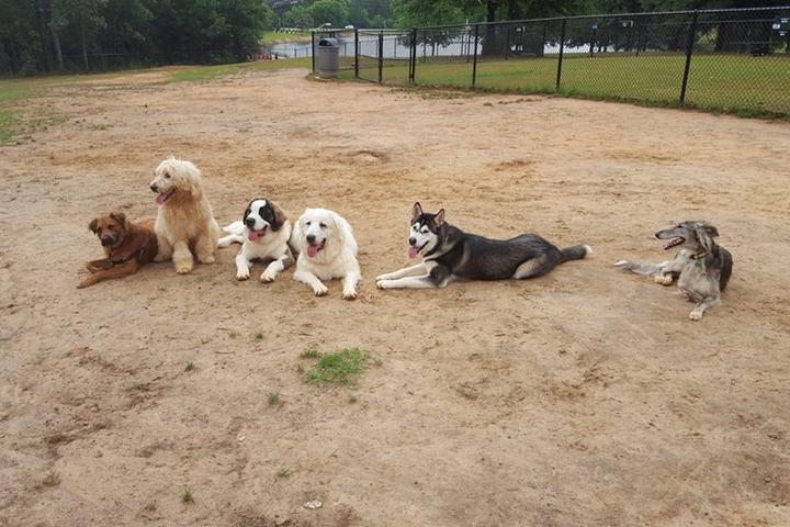 Pet Friendly Johnny Henderson Family Park Dog Park