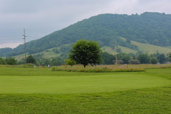 Pet Friendly Schoolhouse Nine Golf Course