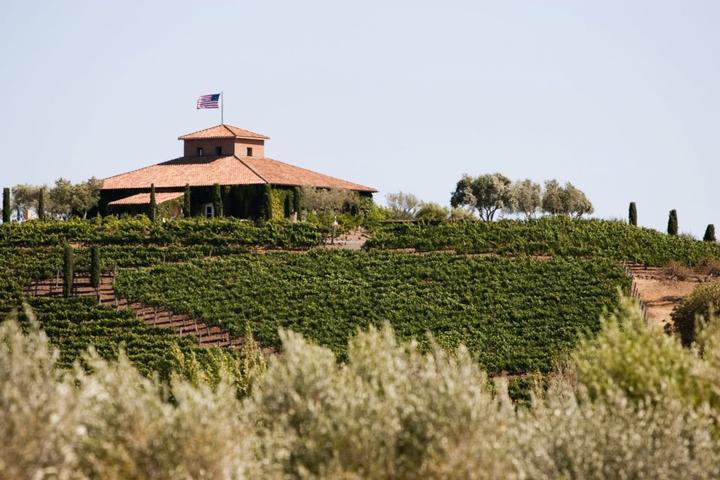 Pet Friendly Viansa Winery & Vineyards
