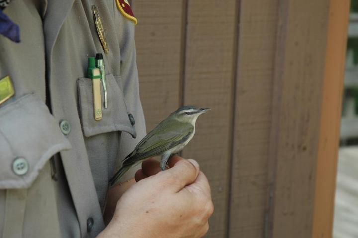 Pet Friendly Haw River State Park