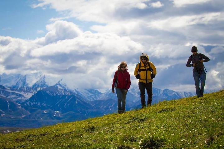 Pet Friendly Denali National Park & Preserve