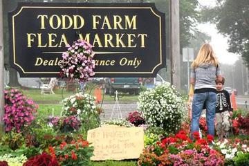 Pet Friendly Todd Farm Flea Market
