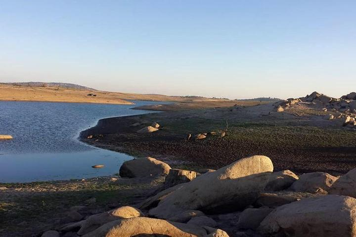 Pet Friendly Folsom Lake State Recreation Area