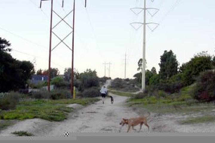Pet Friendly Village Park Trail