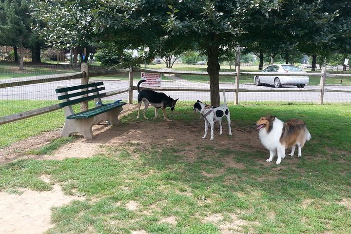 Pet Friendly Anthony Selin' Dog Park