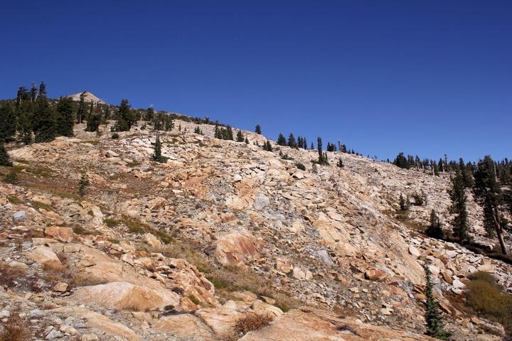 Pet Friendly Pyramid Peak Trail