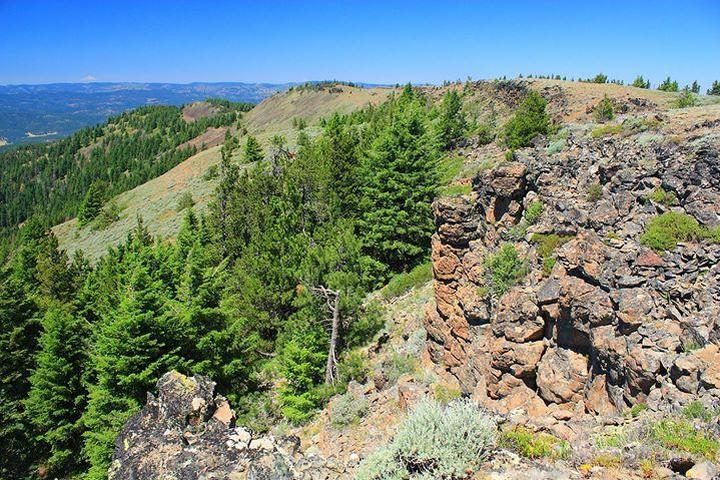 Pet Friendly Independent Mine to Lookout Mountain Summit Trail