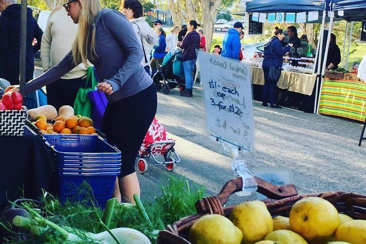 Pet Friendly Maitland Farmers Market