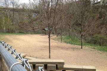 Pet Friendly Stanley's Spot Dog Park