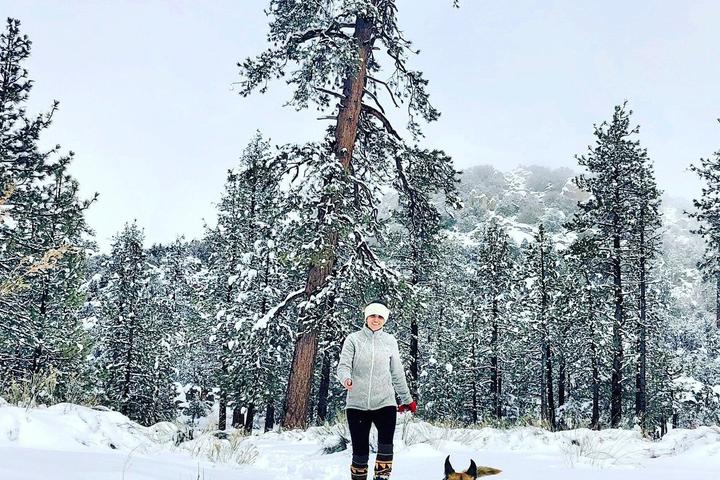 Pet Friendly Big Bear Snow Play and Hot Cocktails