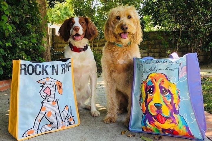 Pet Friendly Faux Paw Productions Artique Gallery