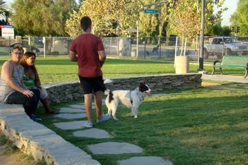 Pet Friendly Riverwalk Dog Park