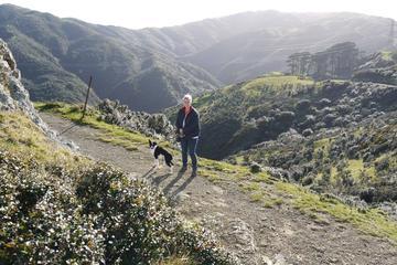 Pet Friendly Otari-Wilton's Bush