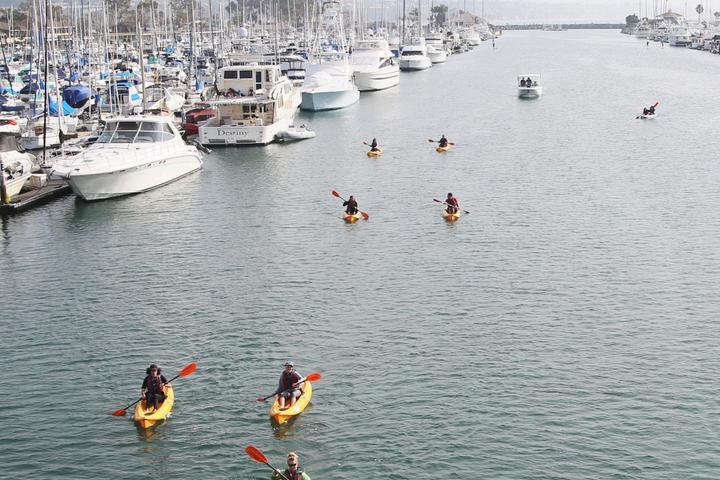 Pet Friendly Kayak & Hiking Experience in Dana Point