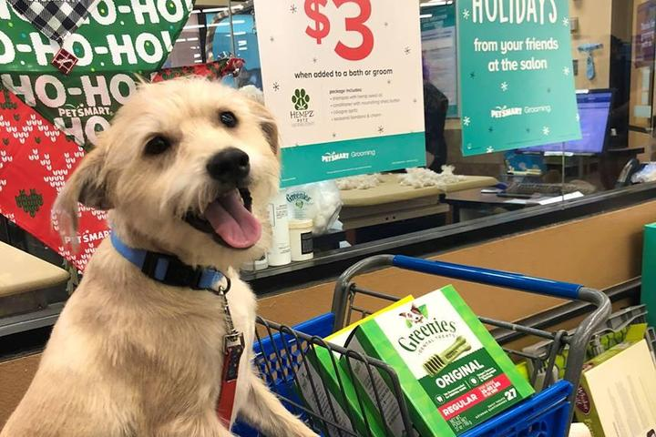 Pet Friendly PetSmart