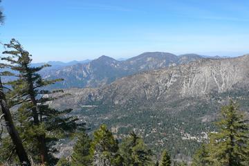 Pet Friendly Mount Islip Trail