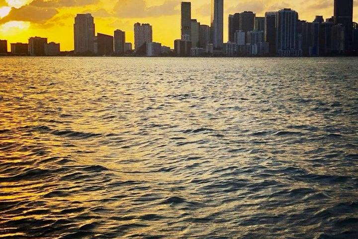 Pet Friendly Breathtaking Skyline Boat Tour Day and Night