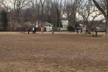 Pet Friendly Broad Ripple Dog Park