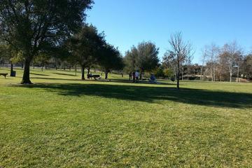 Pet Friendly Camarillo Grove Dog Park