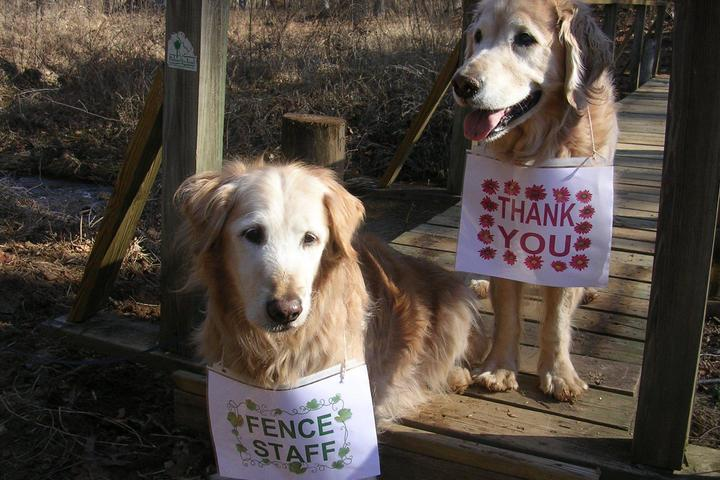 Pet Friendly Henry Hudson Trail