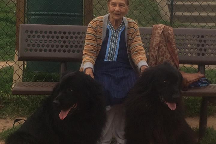 Pet Friendly Chandon Dog Park