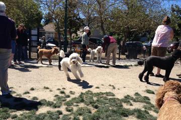 Pet Friendly DeTurk Round Barn Dog Park