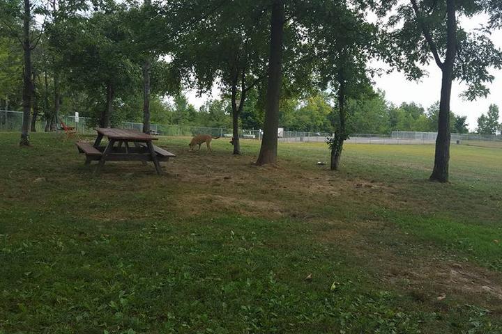Pet Friendly Keyser Dog Park