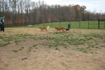 Pet Friendly Maryland City Dog Park