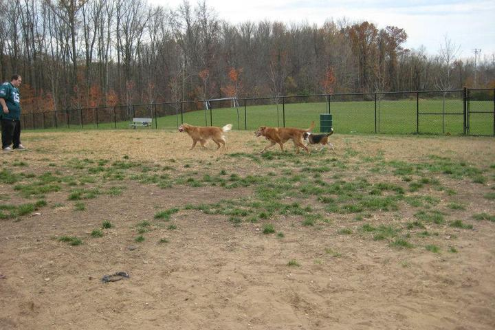 Pet Friendly Maryland City Dog Park
