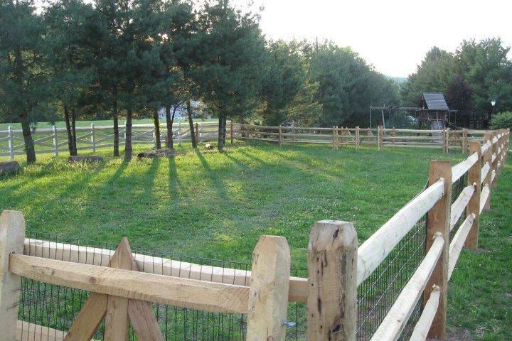 Pet Friendly Catamount Dog Park