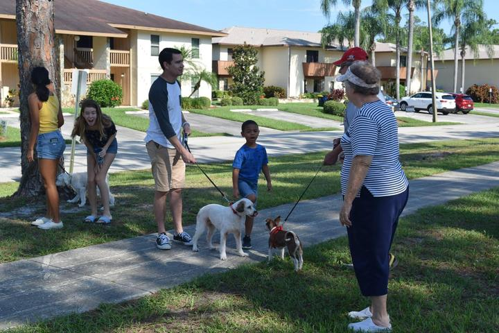Things To Do In Sebring Fl >> Dog Friendly Activities In Sebring Fl Bring Fido