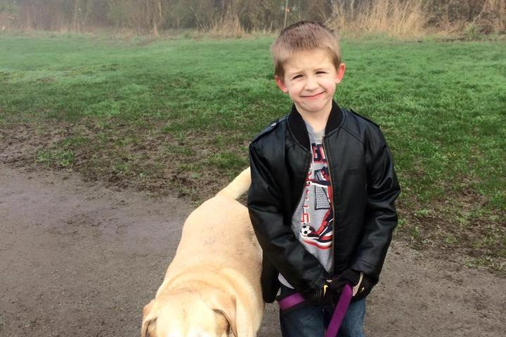 Pet Friendly Brookswood Dog Park