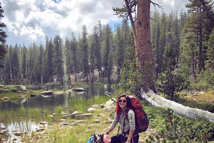 Pet Friendly Dinkey Lakes Wilderness