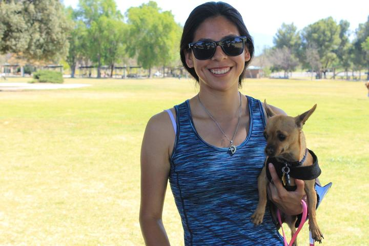 Pet Friendly Lake Perris State Recreation Area