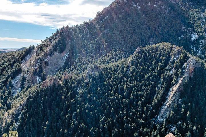 Pet Friendly Front Range Mountain Adventure