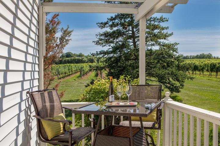 Pet Friendly Vineland Estates Winery