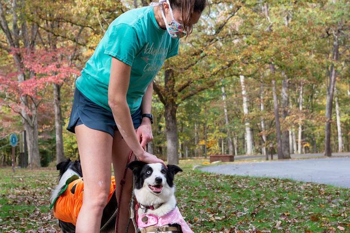 Pet Friendly Fredericksburg & Spotsylvania National Military Park