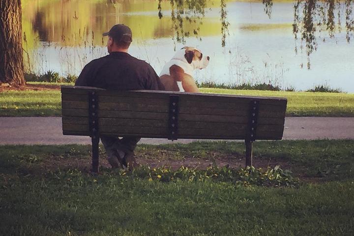 Pet Friendly Lincoln Dog Park