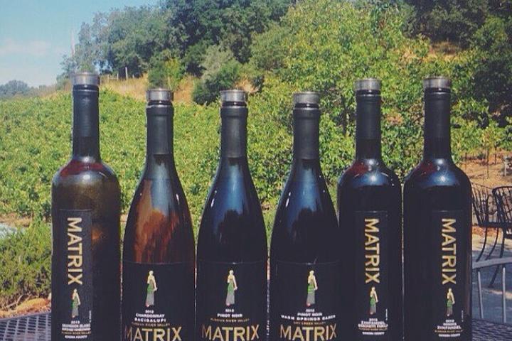 Pet Friendly Sip Sip Lounge at Matrix Winery