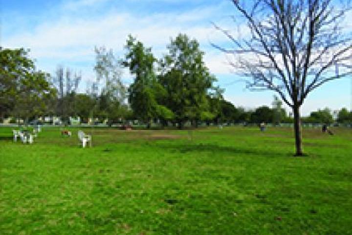 Pet Friendly Sepulveda Basin Off-Leash Dog Park
