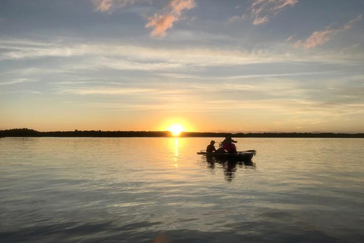Pet Friendly Clear Kayak Sunset Mangrove Tour