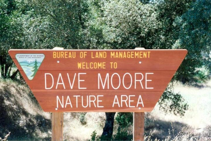 Pet Friendly Dave Moore Nature Area