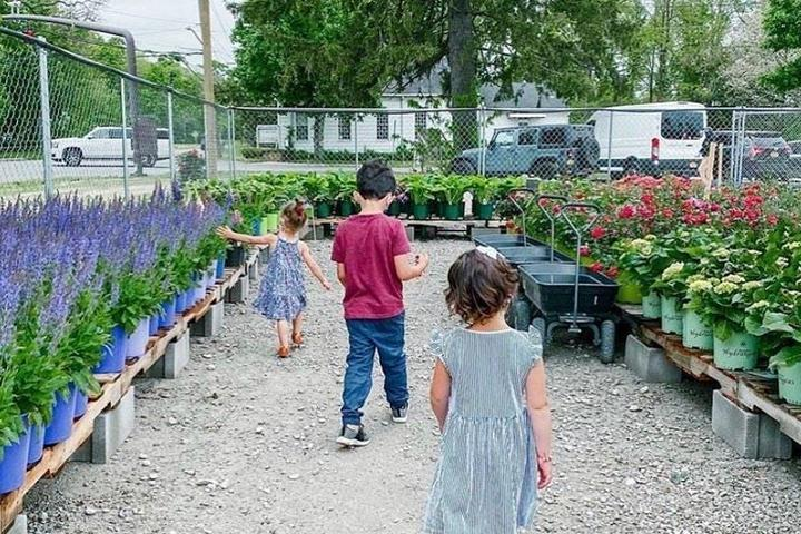 Pet Friendly Waterdrinker Family Farm and Gardens