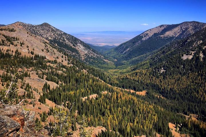 Pet Friendly Elkhorn Crest Trail to Anthony Lake