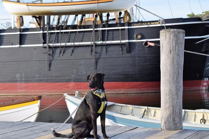 Pet Friendly Mystic Seaport