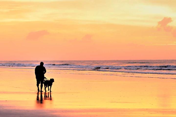 Pet Friendly Bald Head Island Beaches